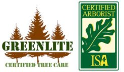 Greenlite Tree Care Homepage
